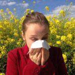Kuidas mõjutab allergia sõitu
